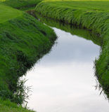 Ditch. In a dutch landscape Royalty Free Stock Photos