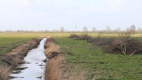 Ditch drainage in north-germany, ostfriesland stock footage