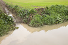 Ditch in a field Stock Photos