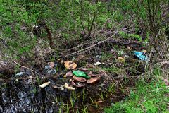 Ditch with garbage in the forest Royalty Free Stock Photo