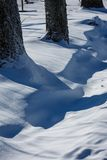 The ditch is partially buried with snow. Winter view; the ditch is partially buried with snow; There are large, thick trees along the ditch; the snow will shine Royalty Free Stock Images