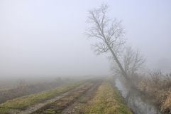 Ditch and road in foggy country Stock Photo