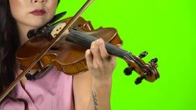 Diteggiatura della ragazza le corde che giocano su un violino marrone Fine in su Schermo verde stock footage