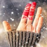 Dito Art Friends Celebrates Christmas Concept Immagine Stock