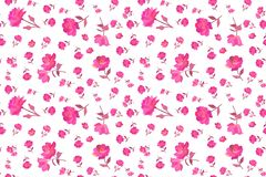 Ditsy seamless floral pattern with small and tiny bright pink rose flowers isolated on white background in vector. Summer print. For fabric vector illustration