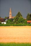 Dittelsheim 图库摄影