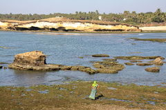 DIU, ΙΝΔΊΑ - 10 ΙΑΝΟΥΑΡΊΟΥ 2014: Ζωηρόχρωμη γυναίκα στην παραλία στο νησί Diu Στοκ Φωτογραφίες