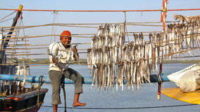DIU, INDIA - JANUARI 9, 2014: Visser die vissen installeren bij de Vissershaven van Vanakbara in Diu-Eiland royalty-vrije stock afbeelding