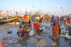 DIU, INDIA - JANUARY 8, 2014: Women preparing fish for sale at Vanakbara Fishing port in Diu Island Stock Image