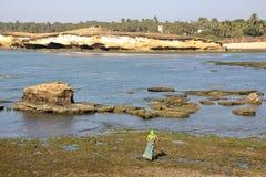 DIU INDIEN - JANUARI 10, 2014: Färgrik kvinna på sjösidan i den Diu ön Arkivfoton
