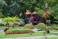 Diuk Terceira ogród, Angra, Terceira, Azores Obrazy Stock