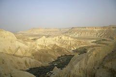 diun boker sede pustynny piasku. Obraz Stock