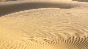 diun horyzontu kosa kurshskaya Russia piasek kroczy rozciąganie zdjęcie wideo