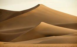 diun horyzontu kosa kurshskaya Russia piasek kroczy rozciąganie Obrazy Stock