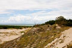 diun horyzontu kosa kurshskaya Russia piasek kroczy rozciąganie Obraz Stock