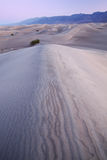 diun płaski mesquite piasek Zdjęcia Stock