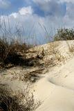 diun trawy piaska morze Zdjęcia Royalty Free