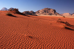 Diuna krajobraz Zdjęcia Stock