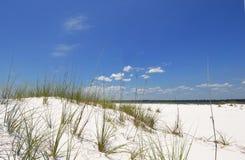 diuna piasek na plaży Fotografia Stock