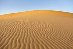 Diuna w pustyni Obrazy Royalty Free