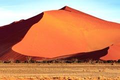 Diuna w Sossusvlei Namibia Zdjęcie Royalty Free