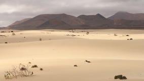 Diuny Fuerteventura Obrazy Stock