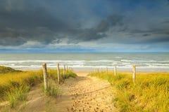 Diuny i morza Krajobrazowe holandie Zdjęcie Stock