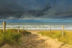 Diuny i morza Krajobrazowe holandie obraz stock