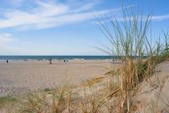 Diuny i rośliny na białym piaskowatej plaży Hoek samochodzie dostawczym Holandia, południowy zachodnie wybrzeże, holandie Zdjęcie Stock