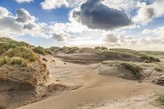 Diuny krajobrazowy Holenderski Północny Denny wybrzeże z skłonami z wydmowymi trawami i nagimi dolinami Zdjęcie Royalty Free