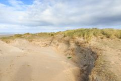 Diuny krajobrazowy Holenderski Północny Denny wybrzeże z skłonami z wydmowymi trawami i nagimi dolinami Obrazy Royalty Free