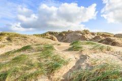 Diuny krajobrazowy Holenderski Północny Denny wybrzeże z skłonami z wydmowymi trawami i nagimi dolinami Obraz Royalty Free