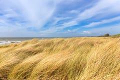 Diuny morzem z widokiem wody i niebieskiego nieba obrazy stock