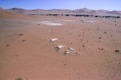 Diuny namib pustynia obrazy stock