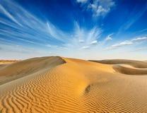 Diuny Thar pustynia, Rajasthan, India Zdjęcie Stock