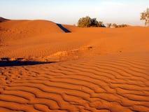Diuny w erga Chebbi pustyni Zdjęcia Royalty Free