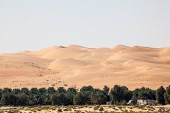 Diuny w Pustej ćwiartki pustyni Zdjęcia Stock
