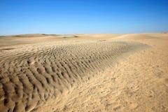 Diuny w Sahara Zdjęcie Royalty Free