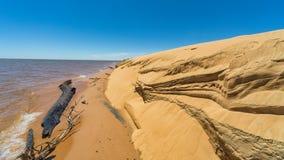 Diuny wyspa «Las Dunas De San Cosme y Damian «po środku Rio Parana blisko miasta Encarnacion fotografia stock
