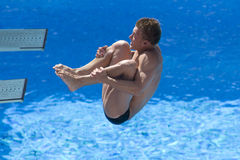 DIV: Final 3m men's diving competition. Jul 23 2009; Rome Italy; Chris Colwill (USA) competing in the final round of the men's 3m springboard diving competition Royalty Free Stock Image