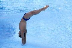 DIV: Mäns för final 3m konkurrens för dykning Fotografering för Bildbyråer