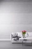 Divan blanc dans la chambre minimaliste Photographie stock libre de droits