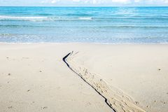 Dive on the beach. Dive on the beach at the sea in summer royalty free stock photography