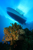 Dive Boat above Coral Reef. Dive boat moored over beautiful coral pinnnacle Royalty Free Stock Photos
