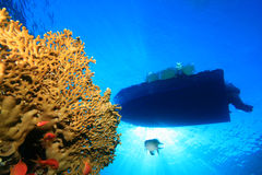 Dive Boat and Coral Reef Stock Photo