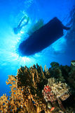 Dive Boat and Coral Reef royalty free stock photo