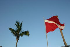 Dive flag. In the Bahamas Stock Image