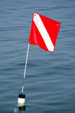 Dive Flag. A dive flag marking the location of scuba divers in Lake Tenkiller State Park, Oklahoma Royalty Free Stock Photos