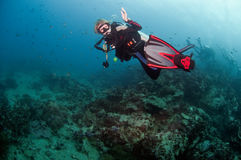 Dive guide. Diving thailand underwater dive guide royalty free stock photo