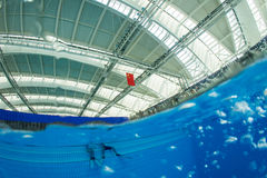 Dive pool and Chinese national flag Royalty Free Stock Photo
